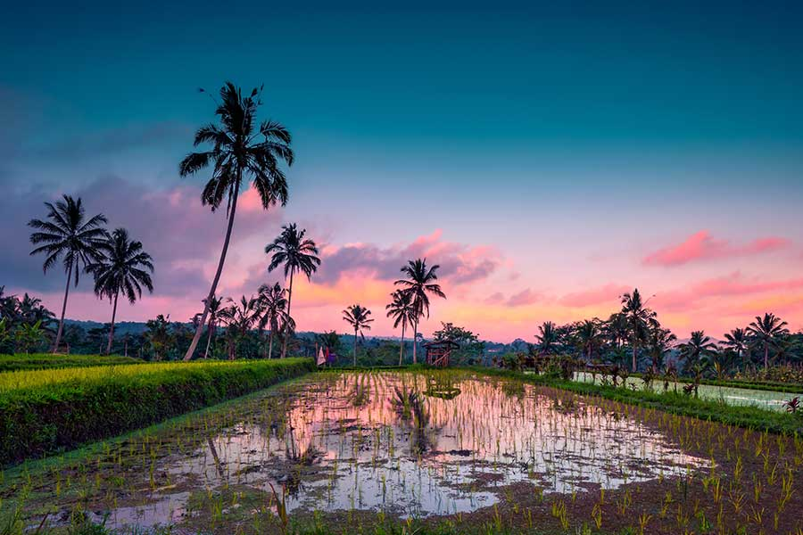 How-to-see-the-most-scenic-Bali-locations