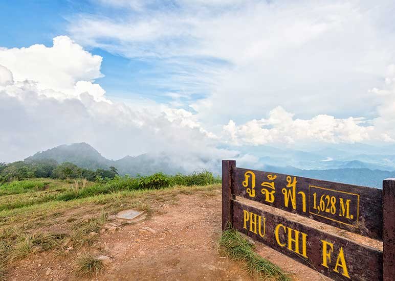 Phu Chi Fah (Have sightseeing above the clouds)