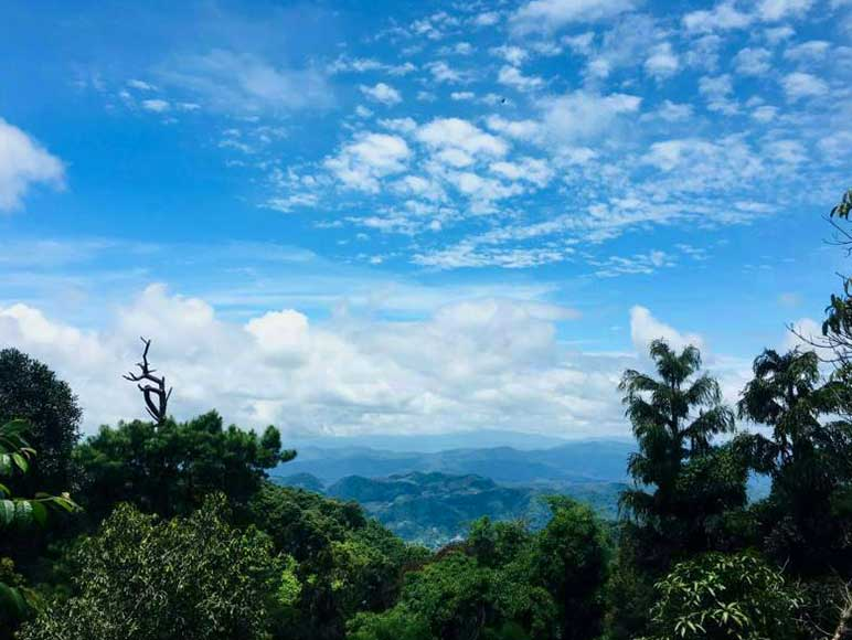 Doi Suthep National Park: Beginner Downhill Bike Ride