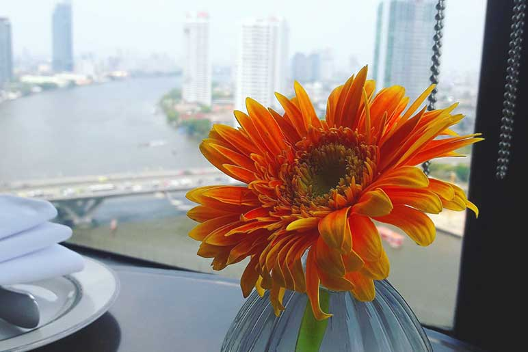 Best time to take a cruise in Bangkok Thailand